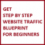 Thumbnail image for Online Sales Training: How to Increase Web Site Traffic