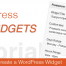 Thumbnail image for Creating Custom WordPress Widgets – The Why and How Of It?