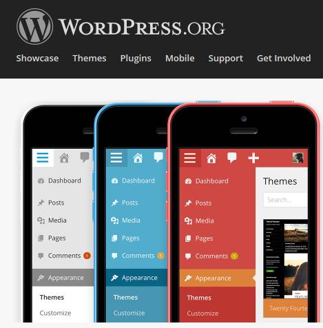 wordpress.com, wordpress.org, blogger or blog.com