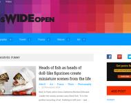 Blog Development Headswideopen.com