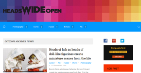 Blog Development Headswideopen.com